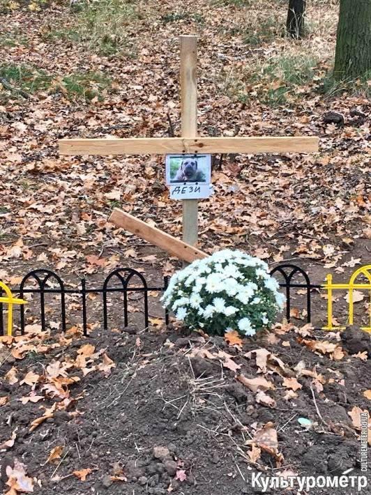 Как и где правильно похоронить собаку? правила и основные ошибки