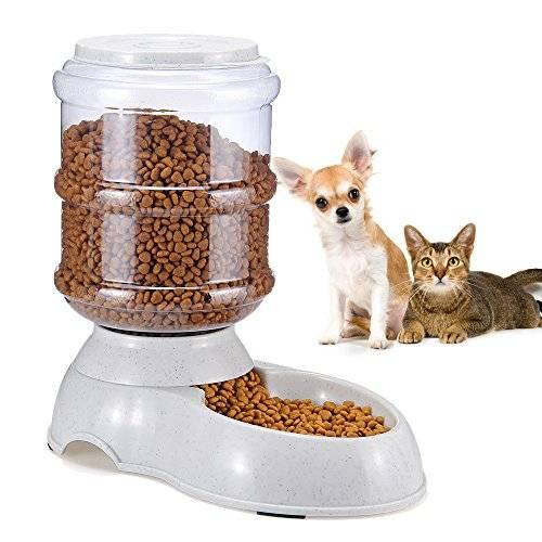 Описание основных видов автокормушек для кошек
