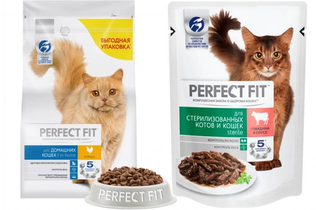 Корм для стерилизованных кошек и котов — какие самые лучшие и хорошие