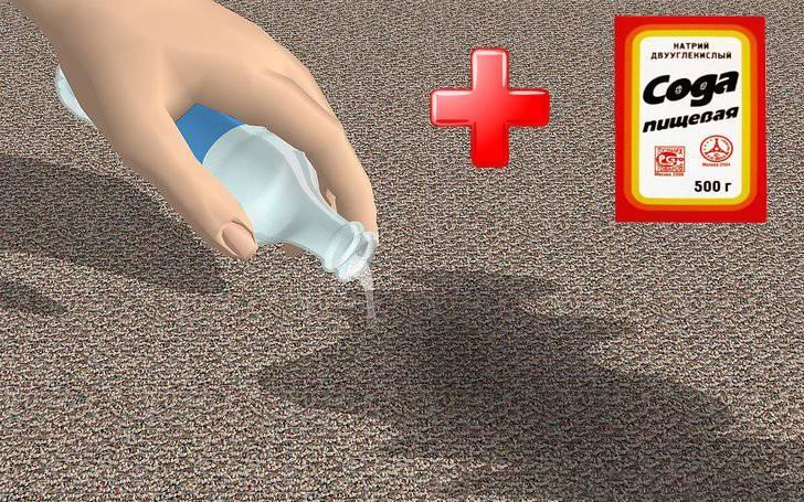 Как избавиться от запаха собачьей мочи в квартире: проверенные способы