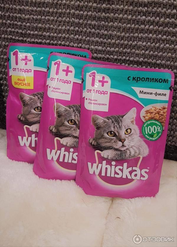 «вискас» корм для взрослых кошек и котят: обзор, состав, ассортимент, плюсы и минусы, отзывы ветеринаров и владельцев, сравнение с «фрискас»