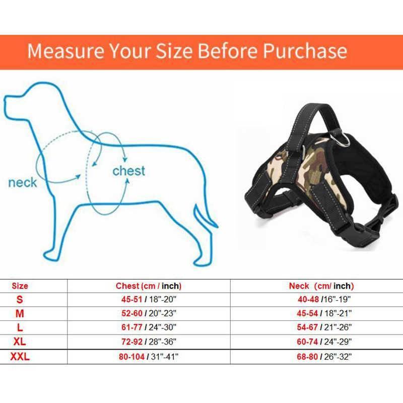 Как правильно подобрать шлейку для собак: виды приспособлений и размеры, правила и критерии выбора, как одеть