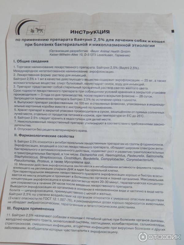 ᐉ байтрил для собак — инструкция по применению - ➡ motildazoo.ru
