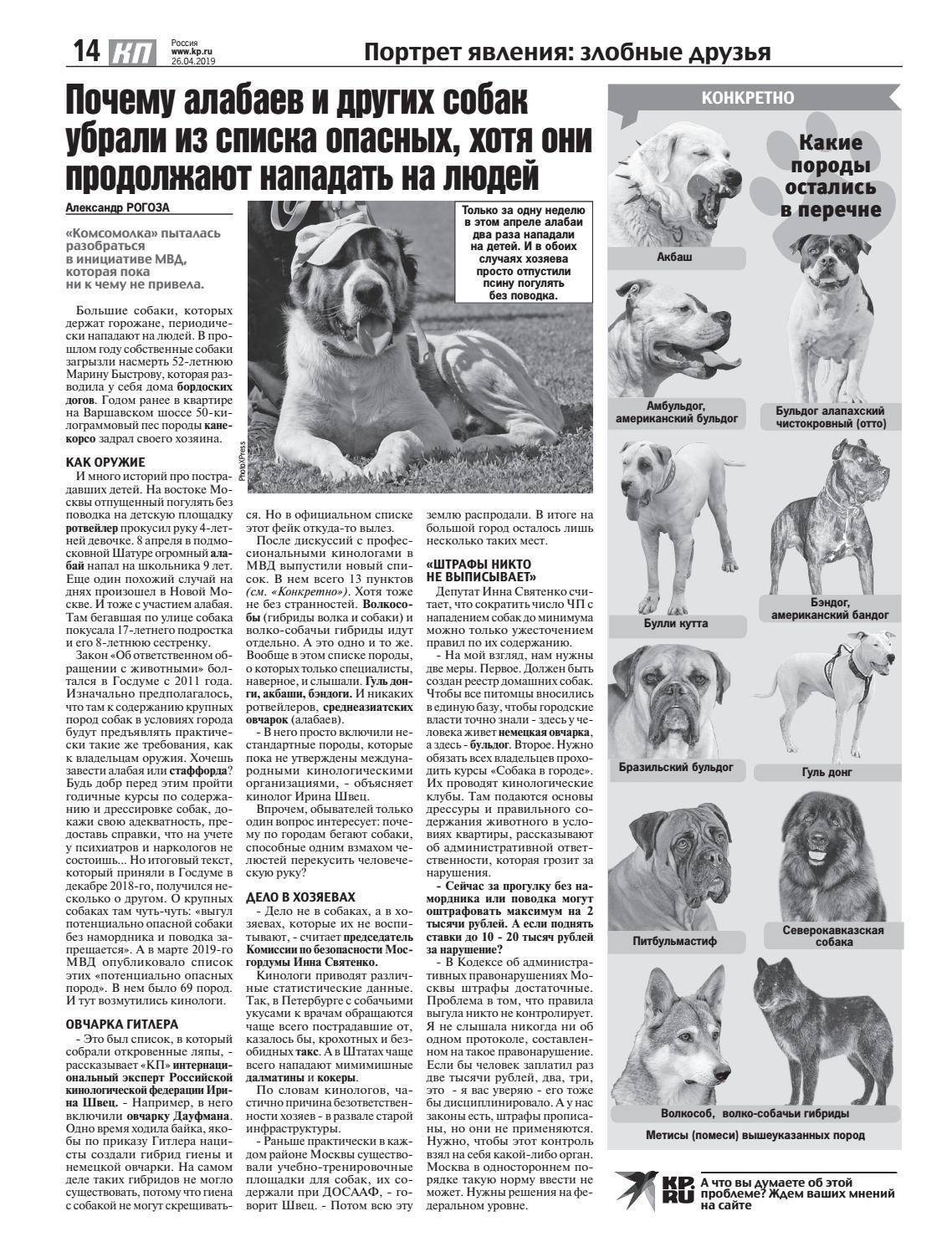 Опасные породы собак - топ 10 самых опасных пород в мире