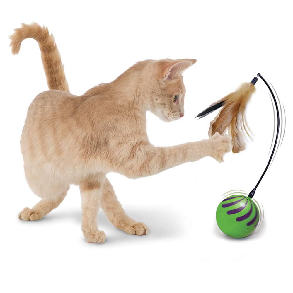 Как сделать игрушку для кота или кошки своими руками в домашних условиях? - kotiko.ru