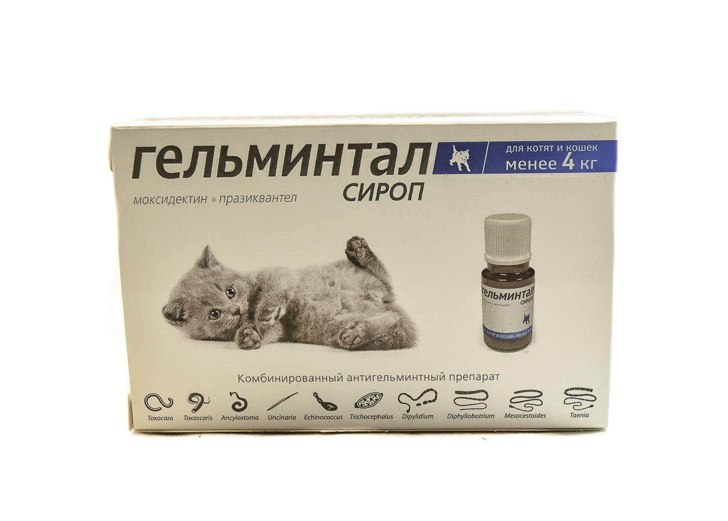 Гельминтал для кошек: показания и инструкция по применению, отзывы, цена