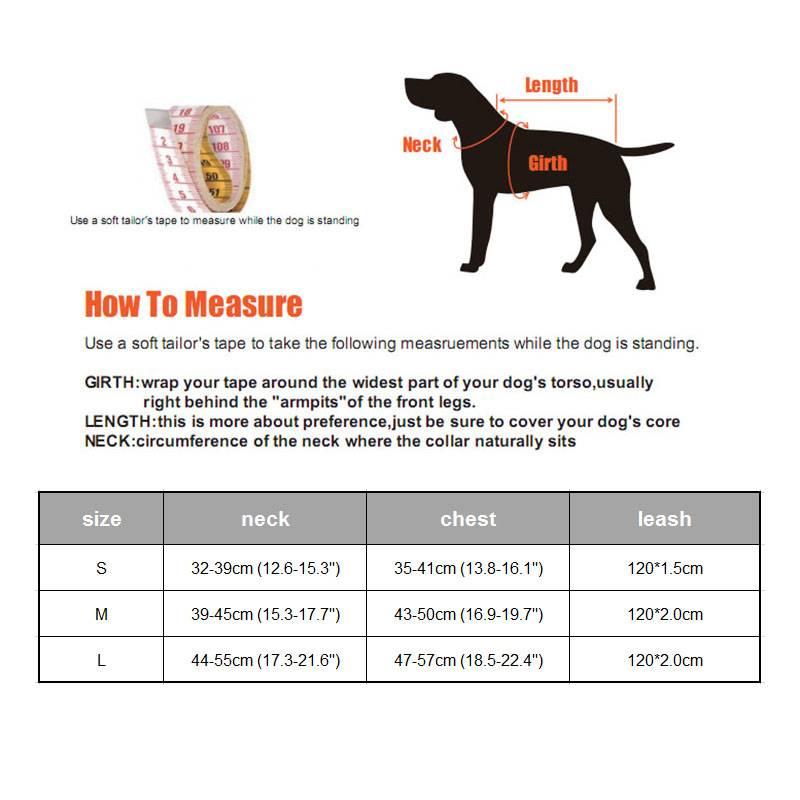 Шлейка для собак (50 фото): как правильно надеть ее на собак крупных, средних и мелких пород? как выбрать шлейку?