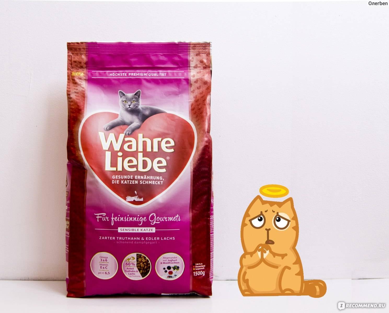 Сухой корм для кошек - рейтинг полезных, гипоаллергенных, премиум класса по производителям и ценам
