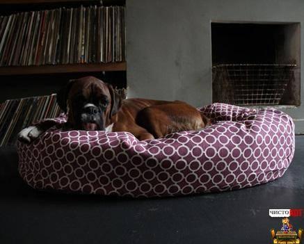 10 лучших производителей лежанок для собак