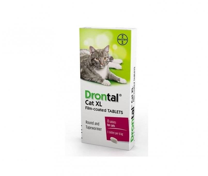 Дронтал для кошек, антигельминтный препарат