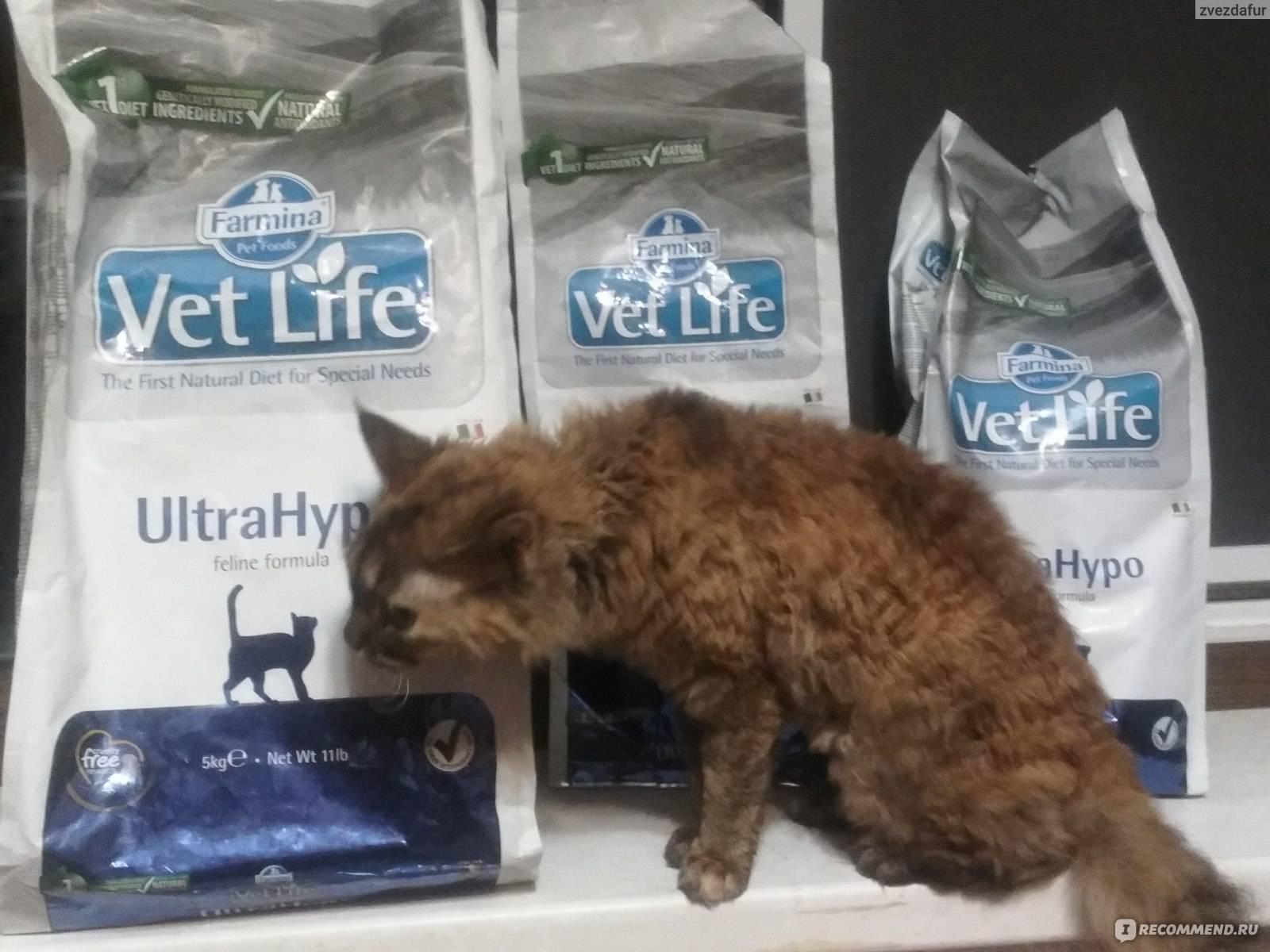 Корм для кошек farmina fun cat meat