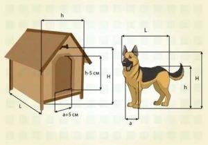 Размеры будки (конуры) для немецкой овчарки: чертеж, схема, фото