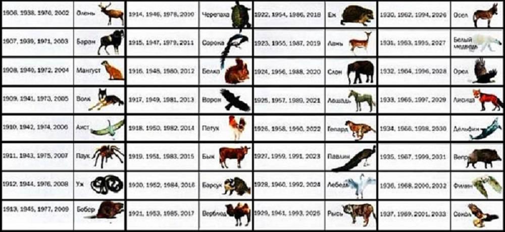 Какое домашнее животное вам лучше подходит, согласно знаку зодиака