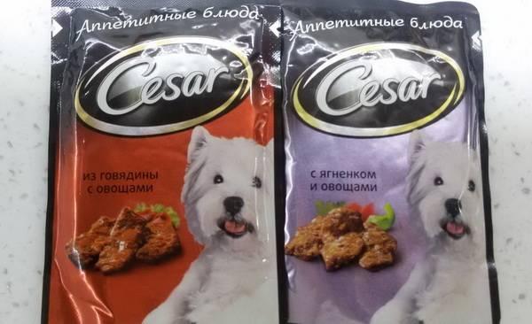 Корм цезарь для собак: отзывы и обзор состава   «дай лапу»