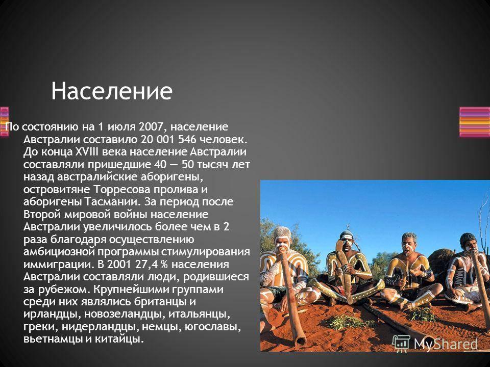 Австралийский мист: описание породы с фото — pet-mir.ru