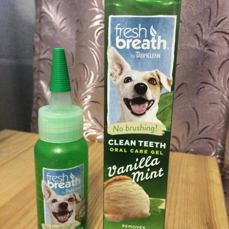 Зубная паста для собак — от зубного камня, для мелких пород