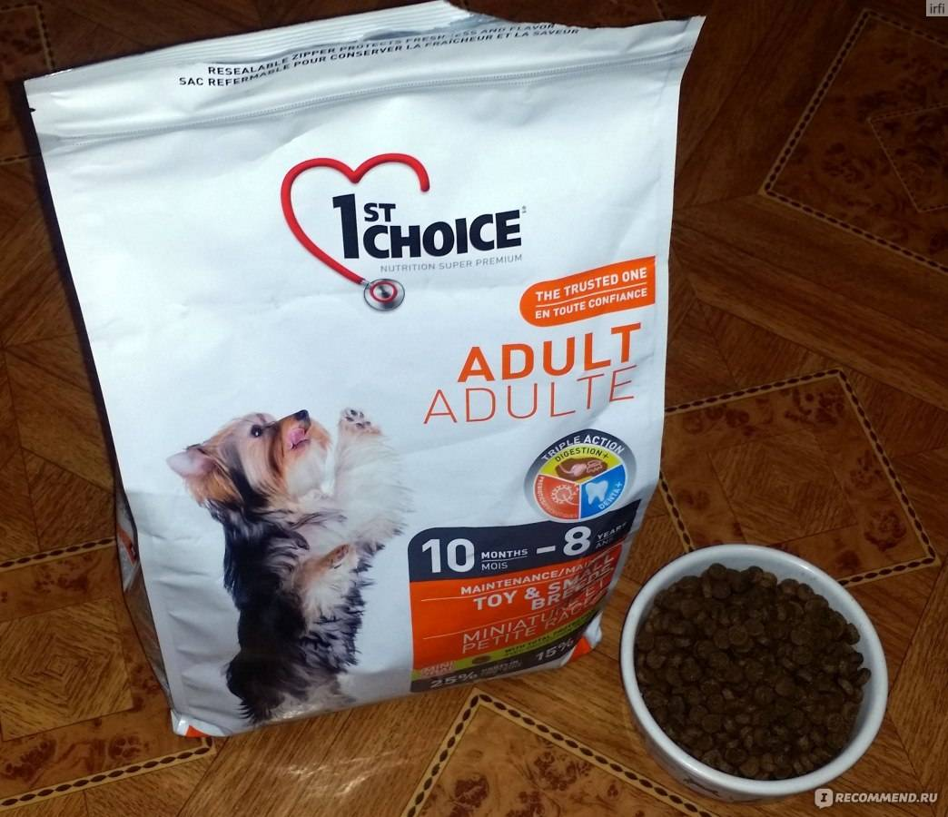 Petcurean. premium pet nutrition for dogs and cats - go! , now fresh & summit