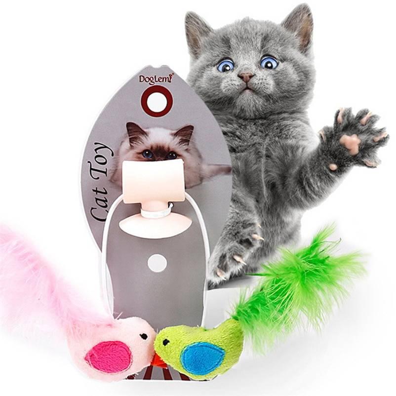 Обзор самых лучших развивающих игрушек для интеллекта у кошек и котят