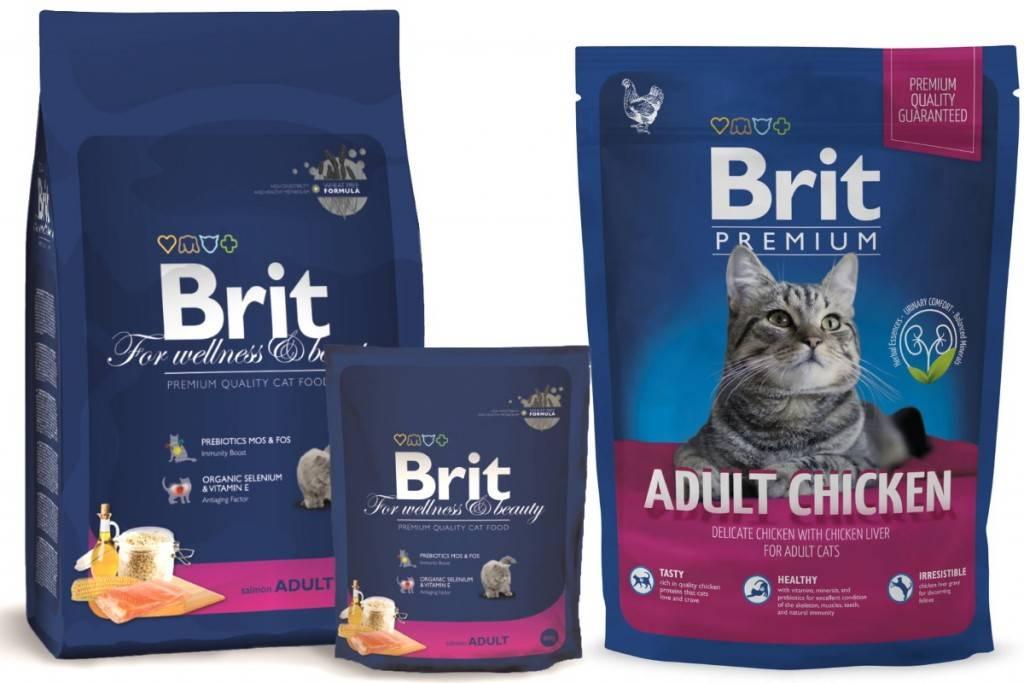 Корм brit care для собак: отзывы, где купить, состав