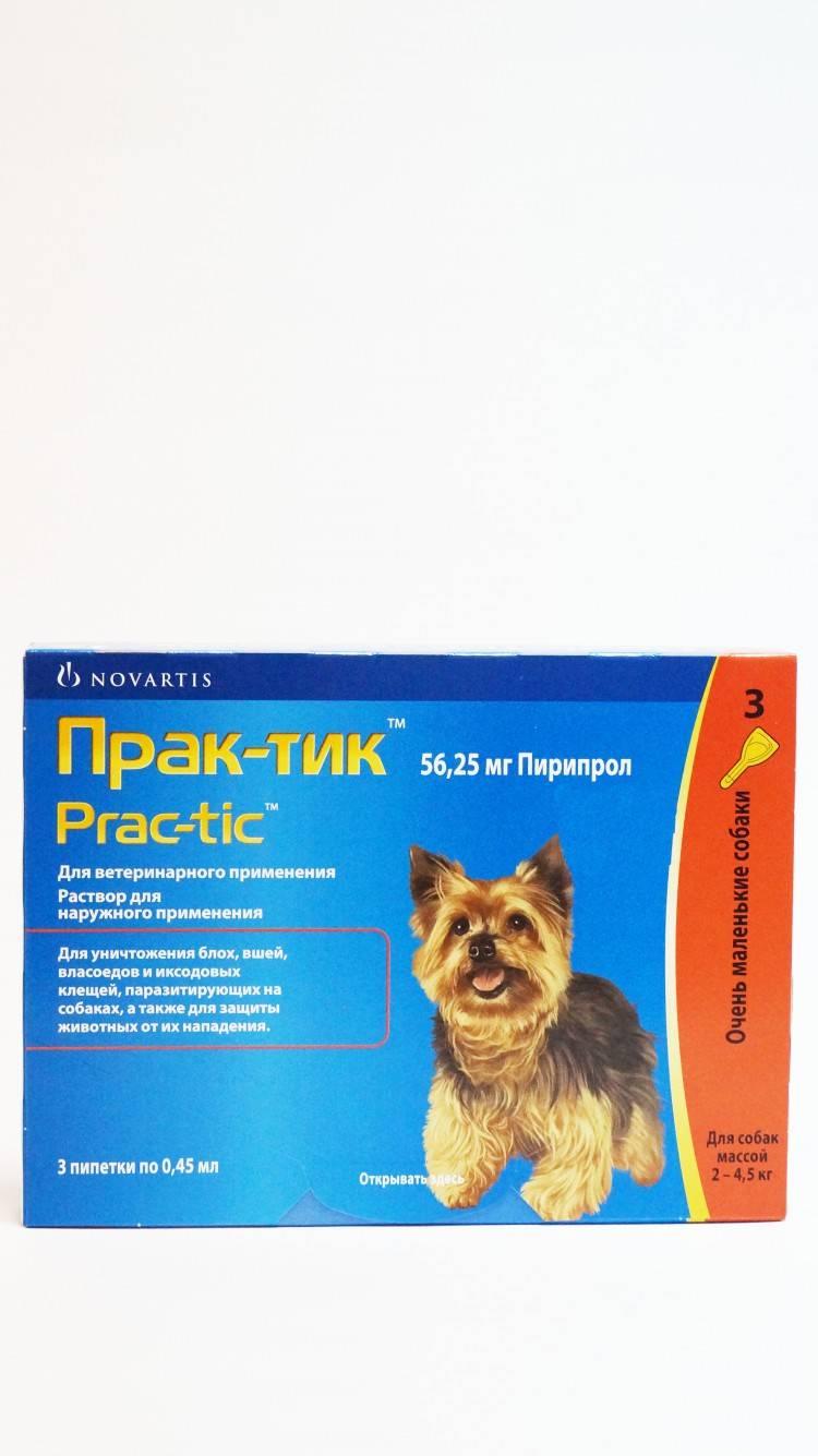 Мультикан 8 для собак: инструкция и показания к применению, отзывы, цена