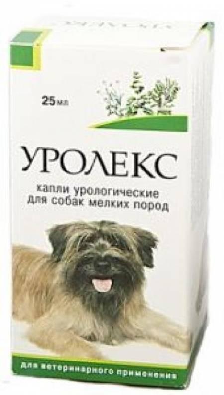 Уролекс для собак – от цистита помогут травы