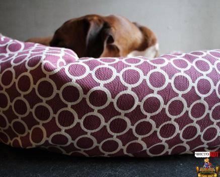 Лежанка для собаки своими руками (44 фото): как сделать лежак из старого свитера? изготовление большой лежанки или домика для собаки