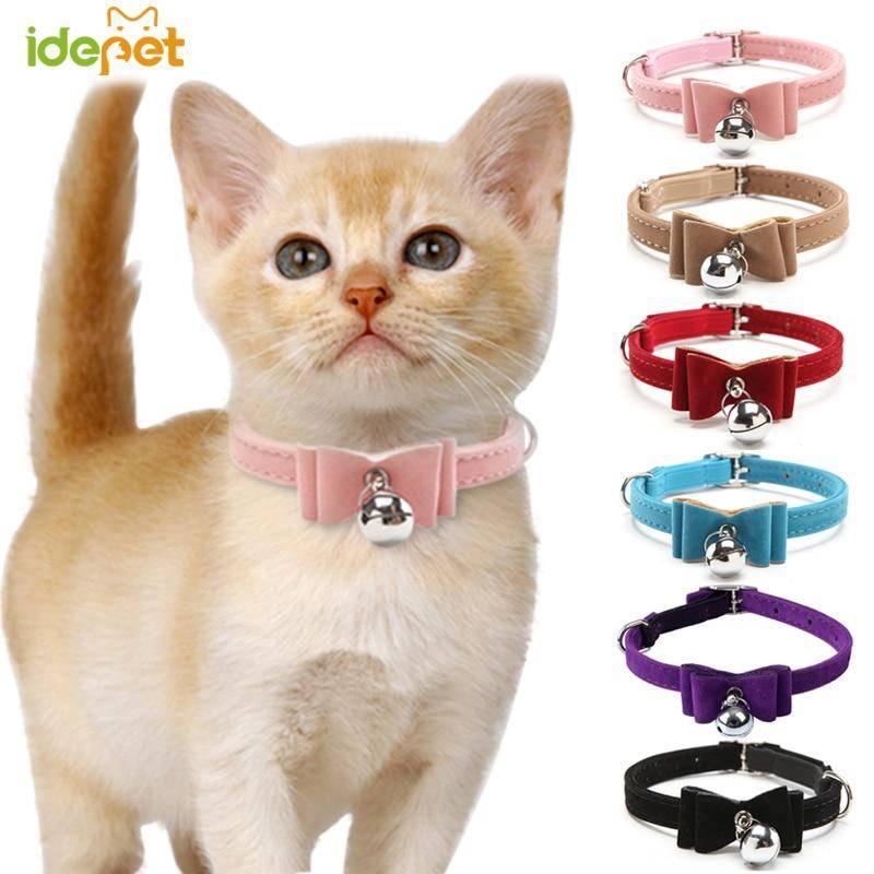 Защитный воротник для кошек своими руками: для чего нужен, как одевать