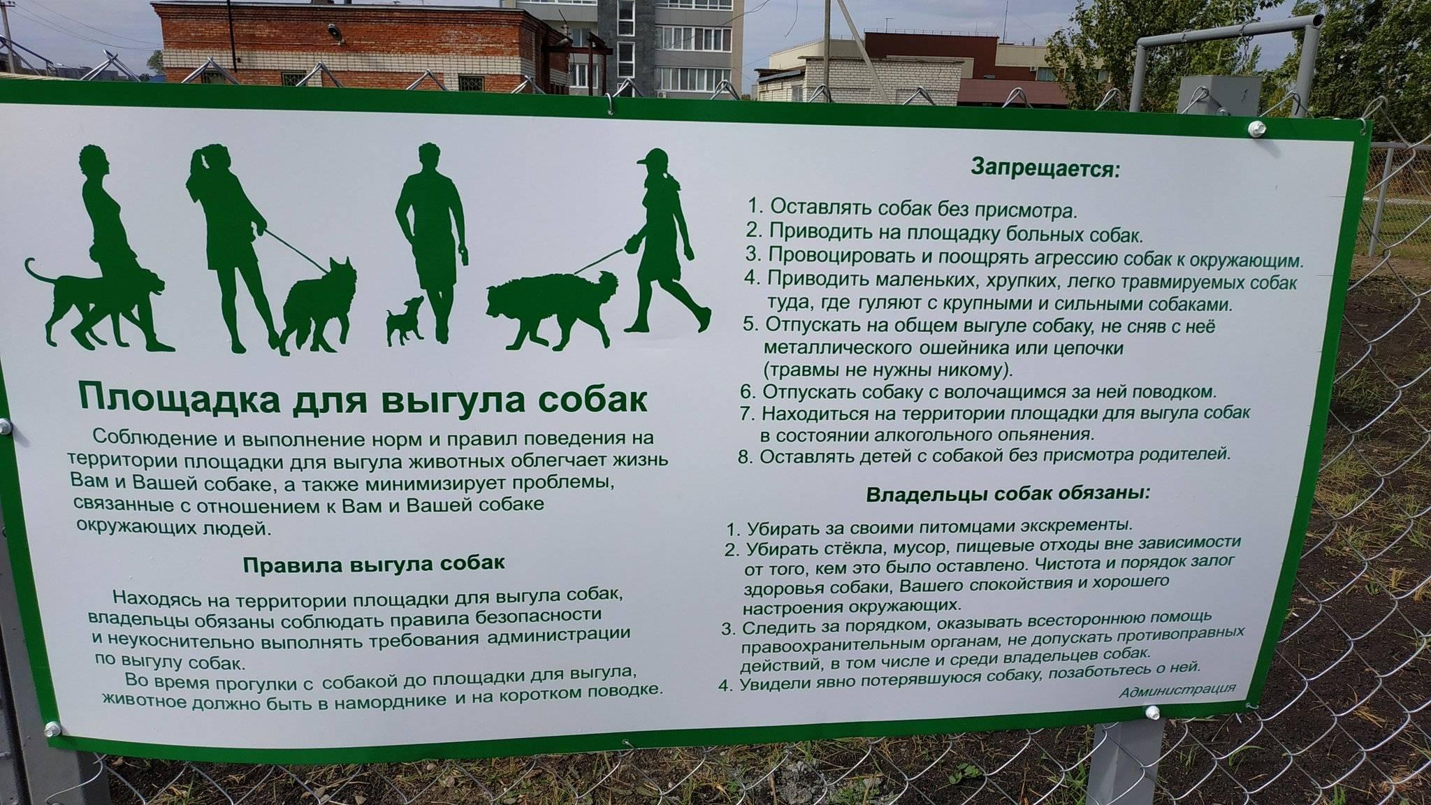 Почему православная церковь запрещает держать собаку в доме