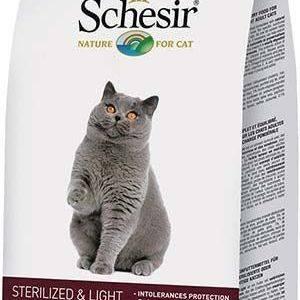 Корм для кошек schesir («шезир»): его состав и виды, преимущества и недостатки, отзывы ветеринаров и владельцев животных