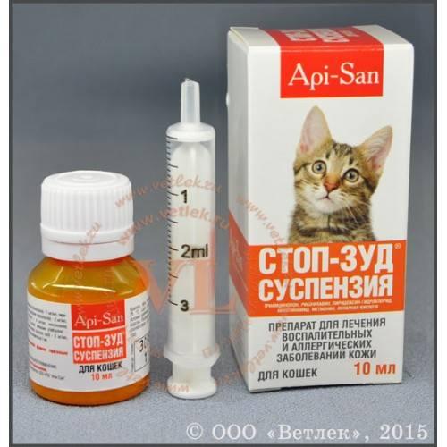 Гайморит – симптомы и лечение у взрослых, признаки развития, препараты