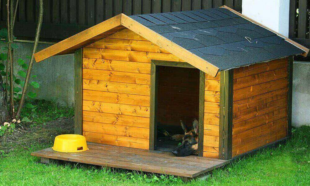 Как построить и где разместить будку для собаки