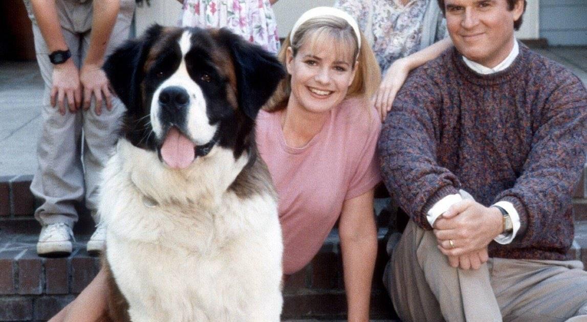 """Порода собаки из фильма """"бетховен"""""""