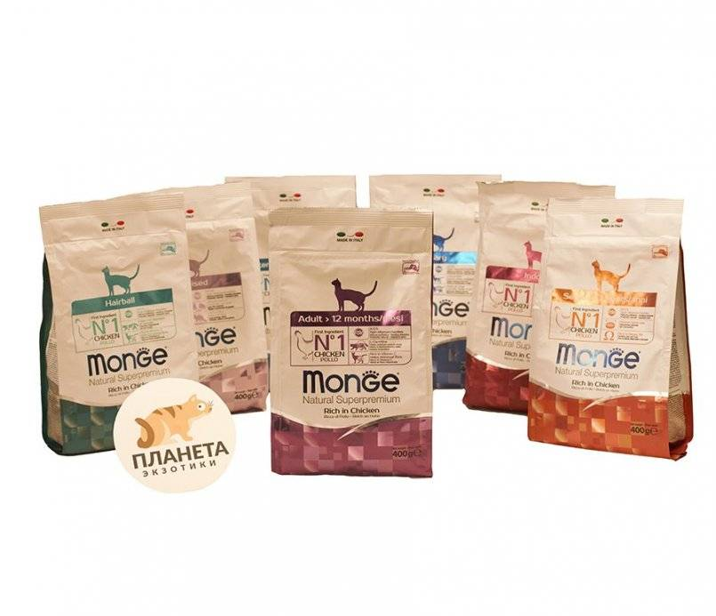 Monge - корм для кошек: состав, линейка, недостатки