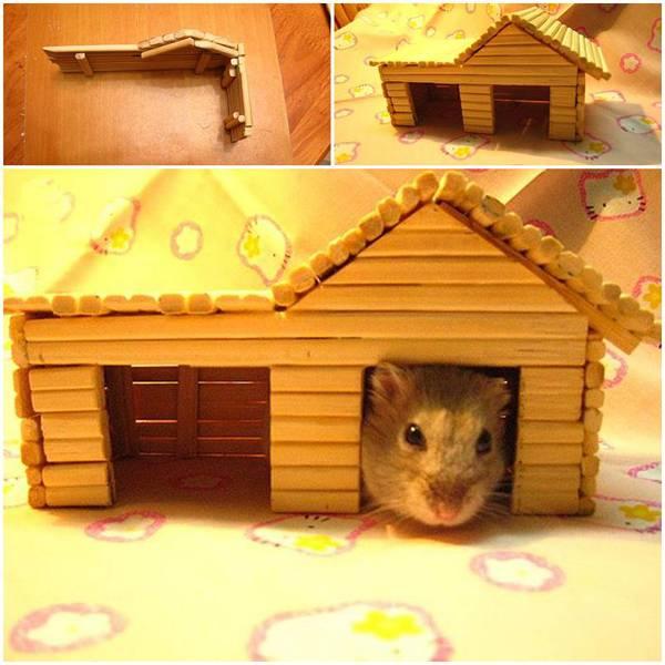 Домики для хомяка (24 фото): особенности деревянных и керамических домов. что класть в качестве подстилки в домики из картона и фанеры?