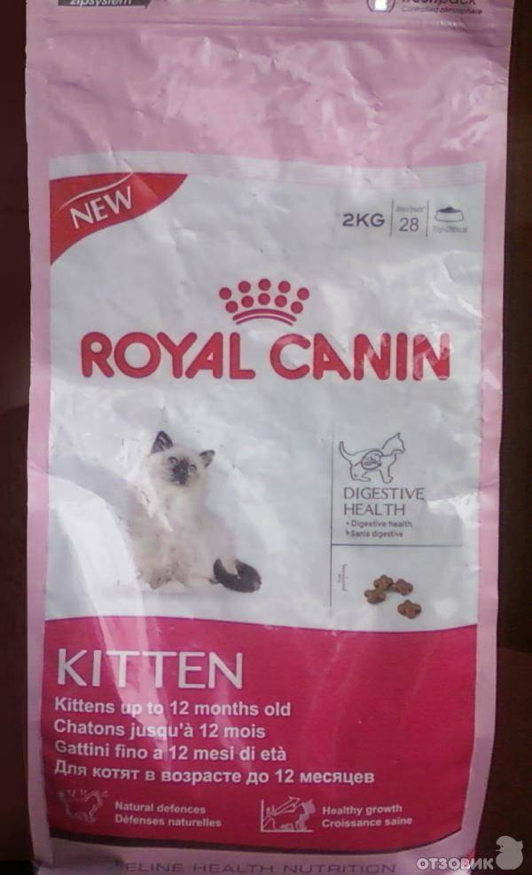 «роял канин» для кошек и котят, стерилизованных животных: обзор, состав royal canin, ассортимент, плюсы и минусы, лечебная линейка кормов