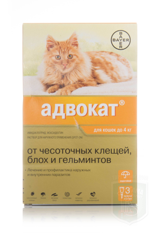 Капли адвокат для кошек: инструкция по применению, отзывы, аналоги
