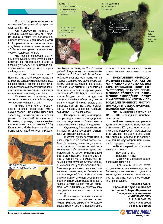 Разведение породистых кошек: бизнес-идея, как открыть, вложения, оборудование, что нужно для открытия + реальные кейсы