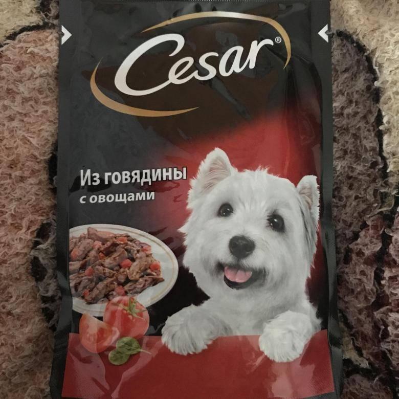 Корм для собак cesar (цезарь): состав, отзывы, производитель