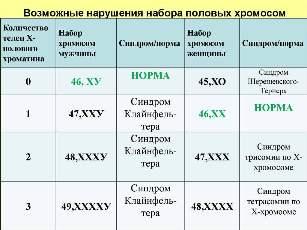 Сколько хромосом у собак и кошек