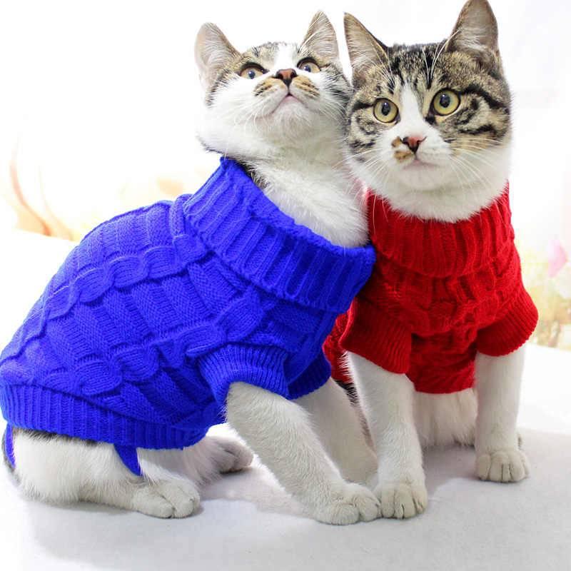 Одежда для кошек и котов: фото, польза, вред, нужна ли