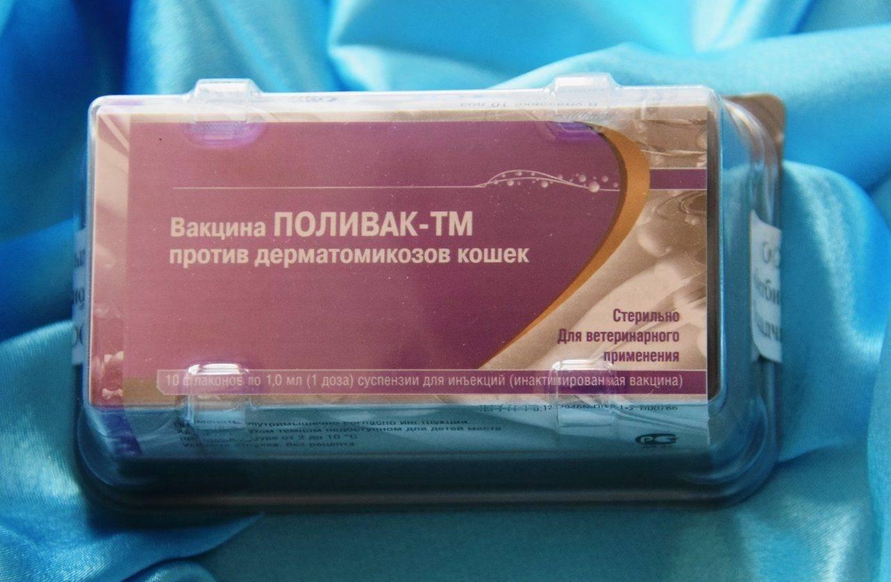Фел-о-вакс iv, комплексная вакцина для кошек