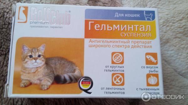 Препараты для дегельминтизации кошек