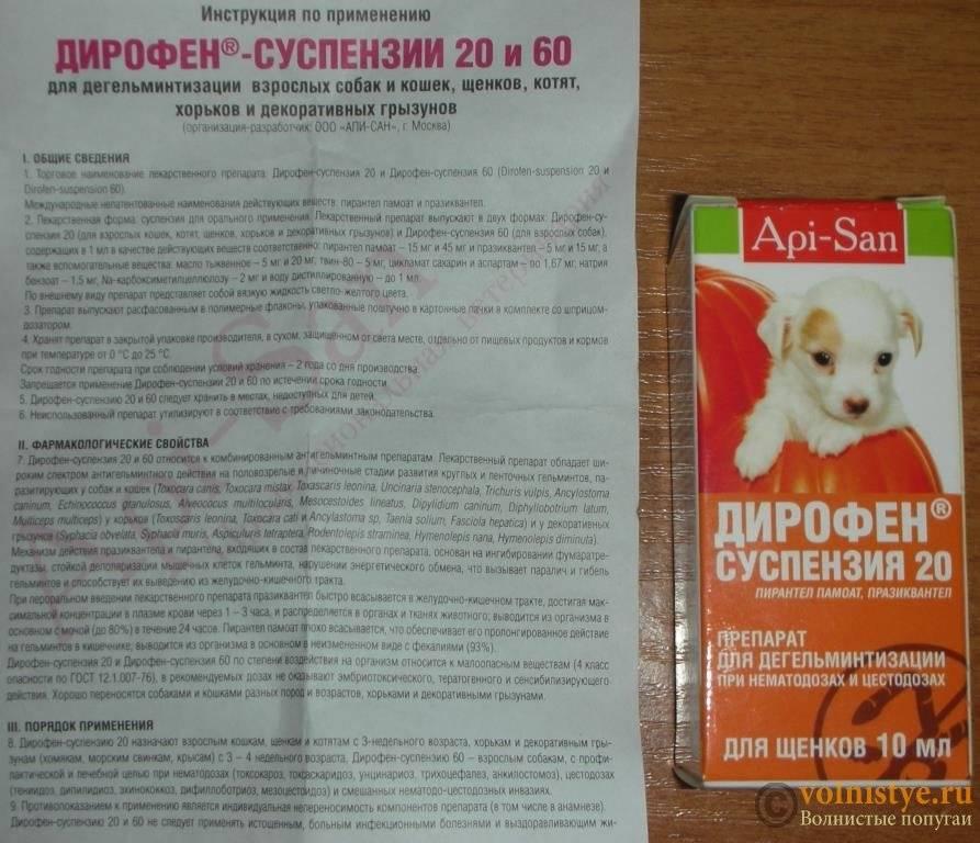 Дирофен таблетки для крупных собак - купить, цена и аналоги, инструкция по применению, отзывы в интернет ветаптеке добропесик