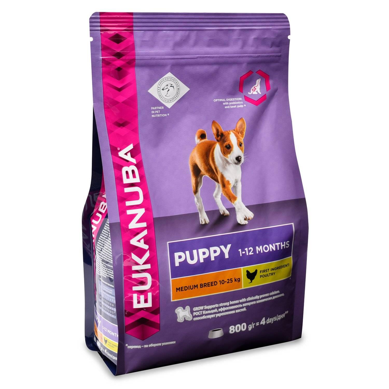 Корм для собак eukanuba: отзывы и разбор состава