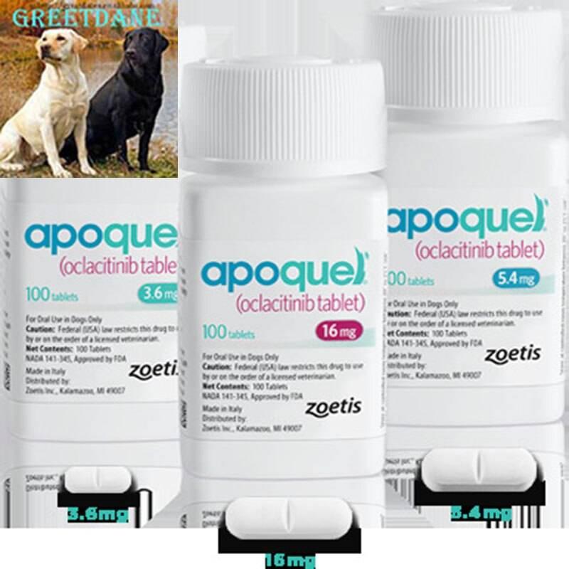 Почему апоквел так популярен на рынке ветеринарии, и почему его советуют врачи?
