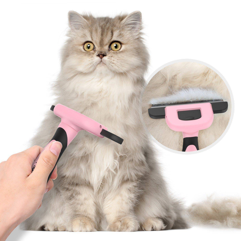 Стрижка кошек - техника выполнения в домашних условиях машинкой с видео