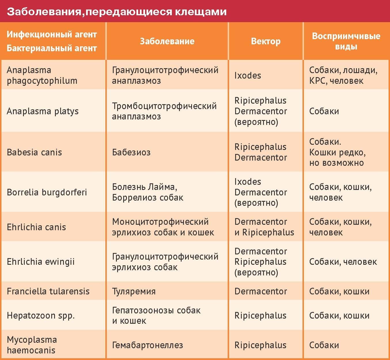 Инфекционные болезни животных