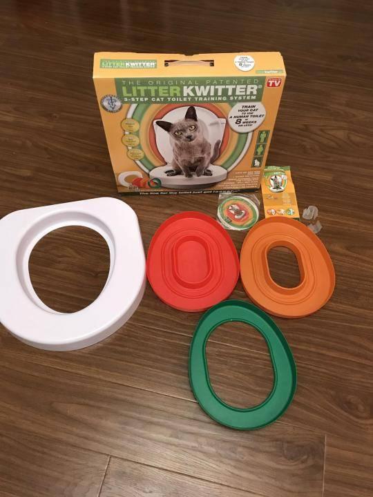 Кот на унитазе: система приручения кошки к туалету