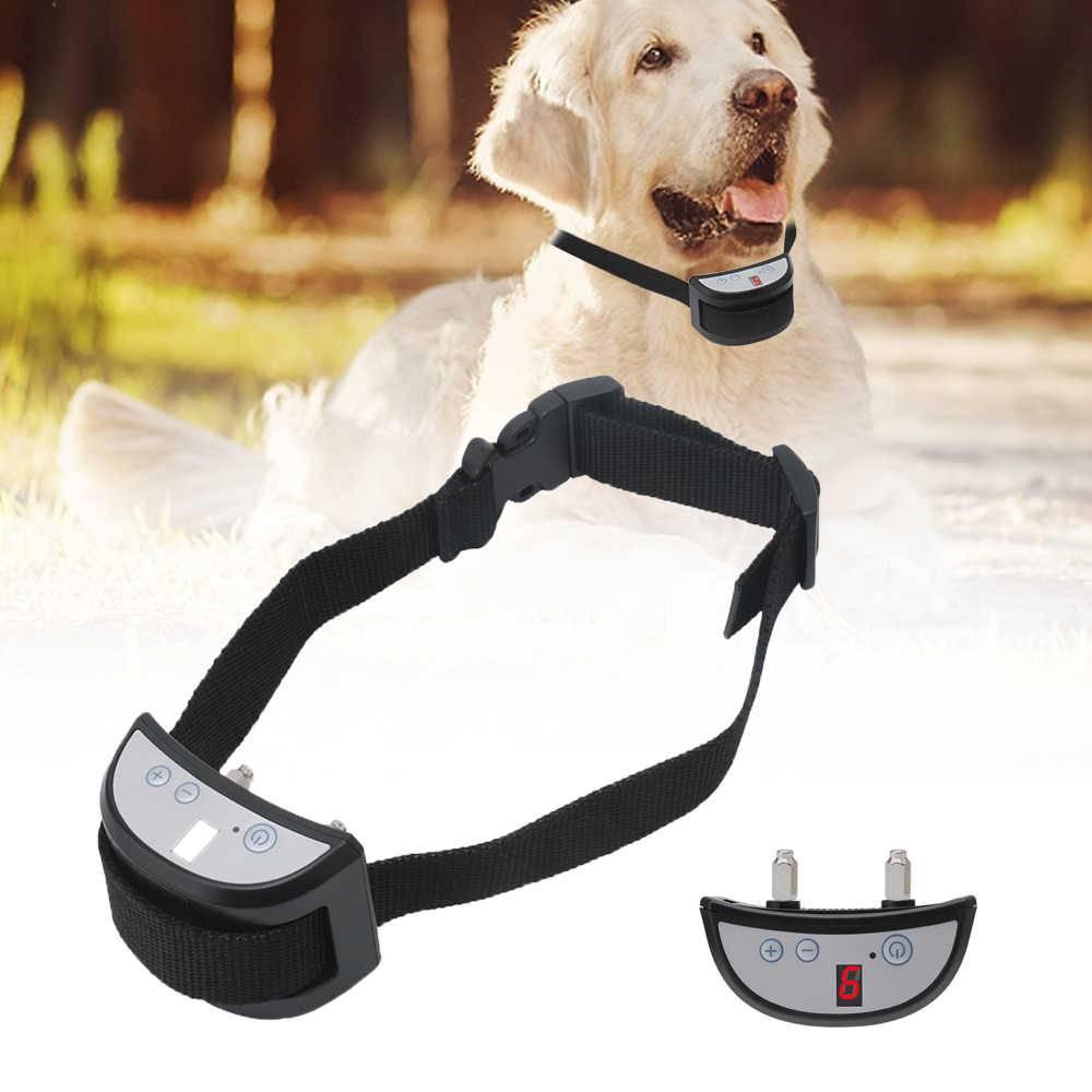 Электроошейник для дрессировки собак. мнение эксперта