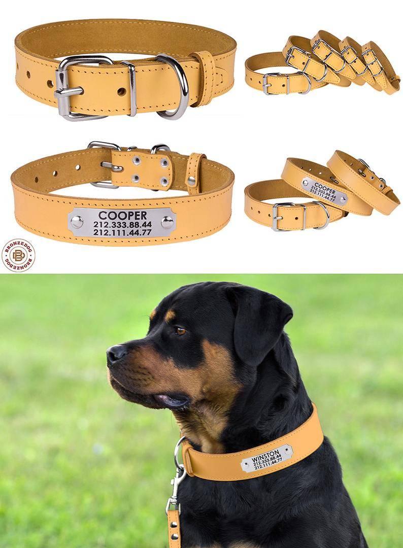 Как сделать ошейник для собаки своими руками: пошаговая инструкция, фото и видео